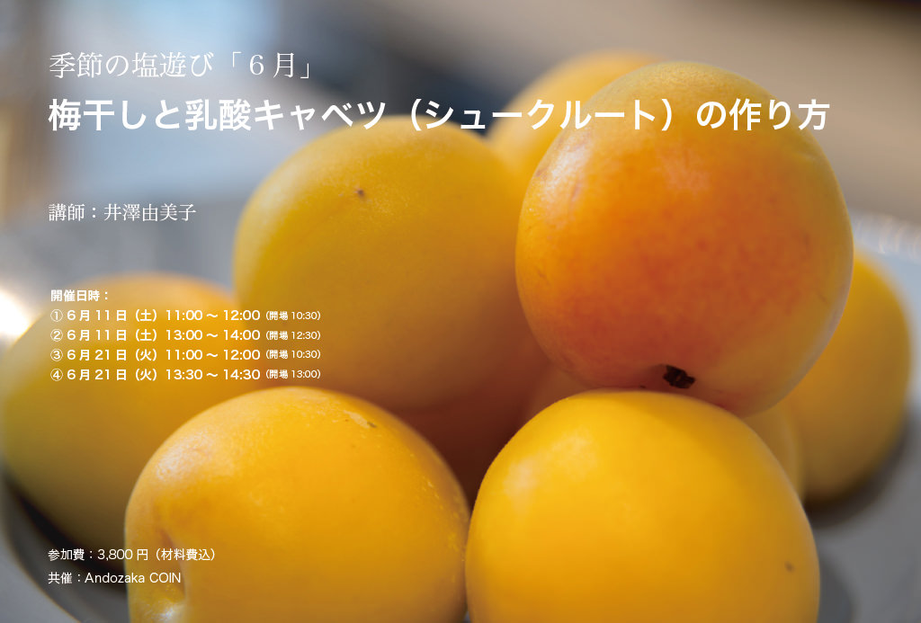 img_andozaka-coin_1f_umeboshi_nyusan_izawa